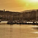 Paseo Maritimo Late Afternoon by phseven