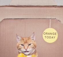 Orange Today Sticker