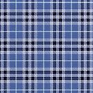 Black and Blue Small Plaid by HighDesign