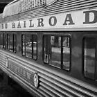 Hobo Railroad by Richard Ahne