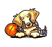 Golden Retriever Basketball Star Photographic Print