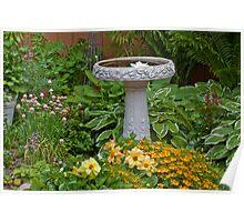 Bird Bath Garden Scene  Poster