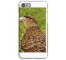 111815 falcon iPhone Case/Skin