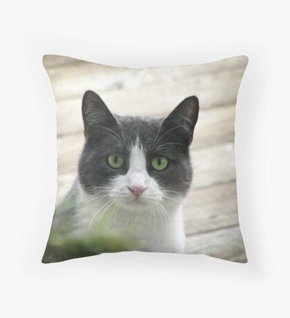 Nobody Knows the Troubles I've Seen Throw Pillow