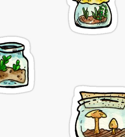 tiny terrariums sticker pack (3) Sticker