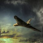 Farewell delta lady  by larry flewers