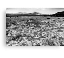San Francisco Mountains Arizona Canvas Print