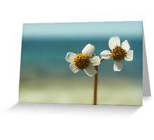 sweet sunshine II Greeting Card
