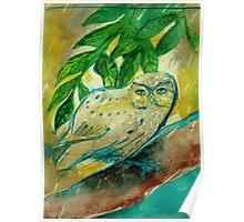 Sheltered Owl  Poster