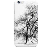 Winter White iPhone Case/Skin
