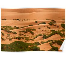 The Sand Dunes OF The West © Poster