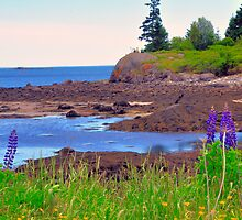 Vinalhaven, Maine by fauselr