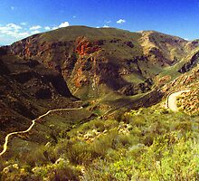 Swartberg Pass #2 - South Africa by Bev Pascoe
