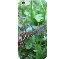Cannibal Dragonfly iPhone Case/Skin