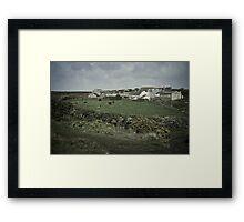 Lizard Farm Framed Print
