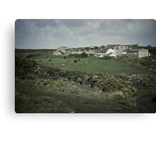 Lizard Farm Canvas Print