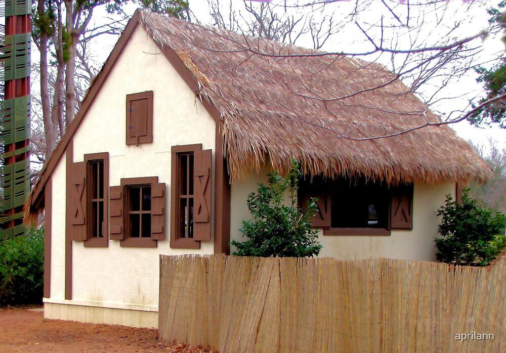 Jack and the Beanstalk House - Dallas Arboretum by aprilann