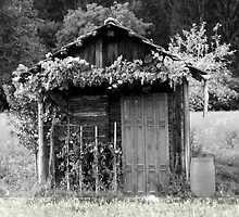 old house by lora931