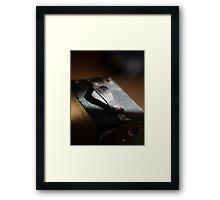 Brownie (2) Framed Print