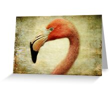 This is my best side, so go ahead and shoot! Greeting Card