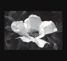 Black Jetbead Flower (bw) Baby Tee