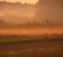 Dawn by Robin Veldhuis