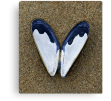 Today we found on the beach this beach Butterfly Canvas Print