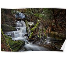 Myrtle Gully Falls, Hobart #11 Poster