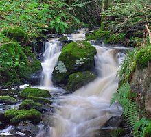 High Dam Beck by Jamie  Green