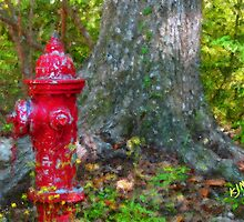 Firehydrant by Kevin McLeod