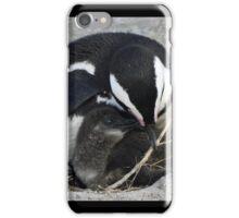 Boulders 16 iPhone Case/Skin