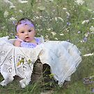 Among the Wildflowers by Lori Deiter