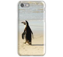 South African Penguin on Boulders Beach  iPhone Case/Skin