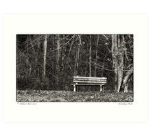 Bench by a Woods Art Print