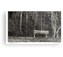 Bench by a Woods Metal Print