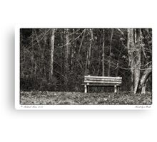 Bench by a Woods Canvas Print