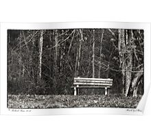 Bench by a Woods Poster