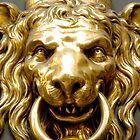 Lions Head Door Knocker by traveling9to5
