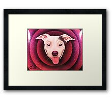 Jimmy Sue Framed Print