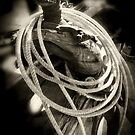 Rope ~ Saddle by Lucinda Walter