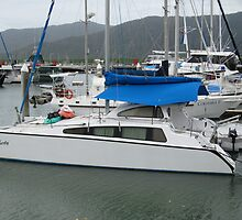 Blue Sails in the Wet, Marina, Cairns, wet & cold day. by Rita Blom