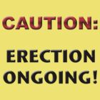 Caution:  Erection Ongoing by LeO2