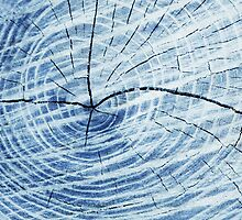The Doppler Effect (log abstract) by Laurie Minor