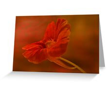 Textured Nasturium  Greeting Card