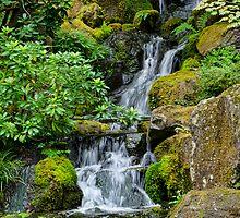 Cascading Toward the Pond by Don Schwartz