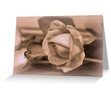 Solitude and Solace  Greeting Card