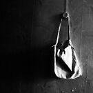 wall bag by Nikolay Semyonov