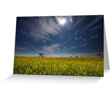 Under the Outback Sun Greeting Card