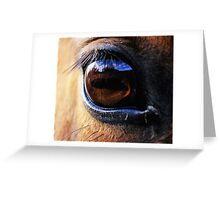 Horse Eye View Greeting Card