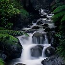 Cement Creek Side Cascades 31st August 2012 by Tony Lin